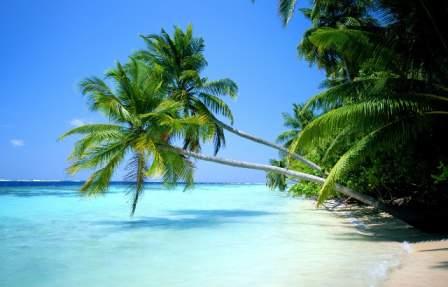 Beautiful Beach Wide Screen Vista Starter Wallpaper