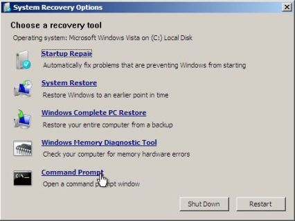 Windows Vista System Recovery Options