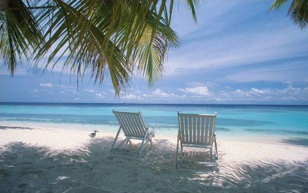 Free Beach Vista DreamScene