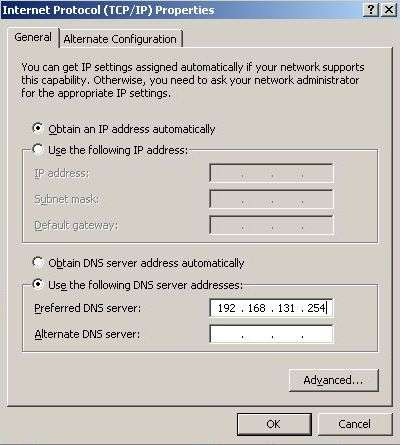 DNS Server Gateway IP for Virtual PC for Internet