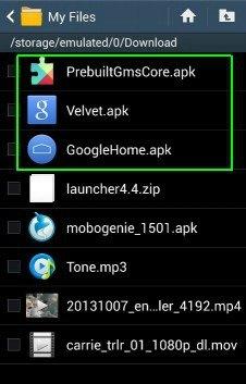 PreBuiltGMSCore.apk, Velvet.apk, GoogleHome.apk
