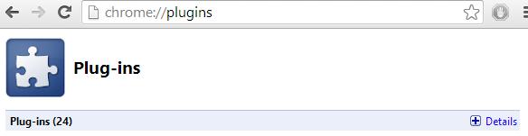 Chrome Plug-ins Details
