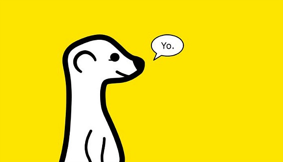 "How To Add ""Follow me on Meerkat"" Button to Website or Blog"
